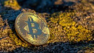 Gewinne auf Bitcoin Profit erzielen